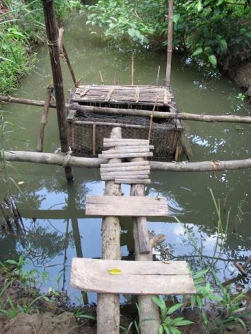 A fish trap