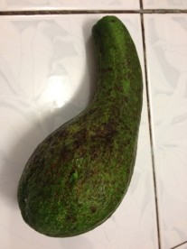 A gourd, you say? Why no - it's an avocado from the tree next to our office!