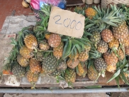 Pineapples for sale - small and sweet
